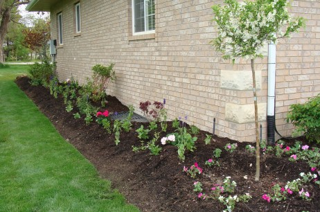 10 Summer Tips to keeping your yard looking great!